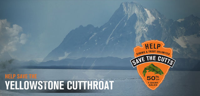 Save the Cutts